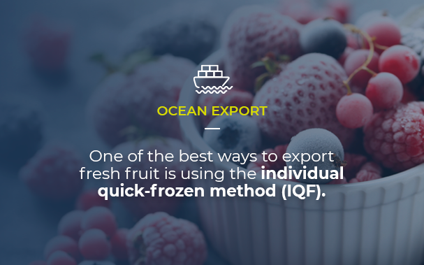 Over a picture of nice frozen berries in a pot, we present an insight of the article: first, that it is about ocean exports, and then that one of the best ways to export fresh fruit is using the individual quick frozen method (IQF).